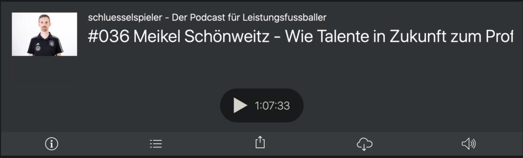 Folge 36: Meikel Schönweitz im schluesselspieler Podcast